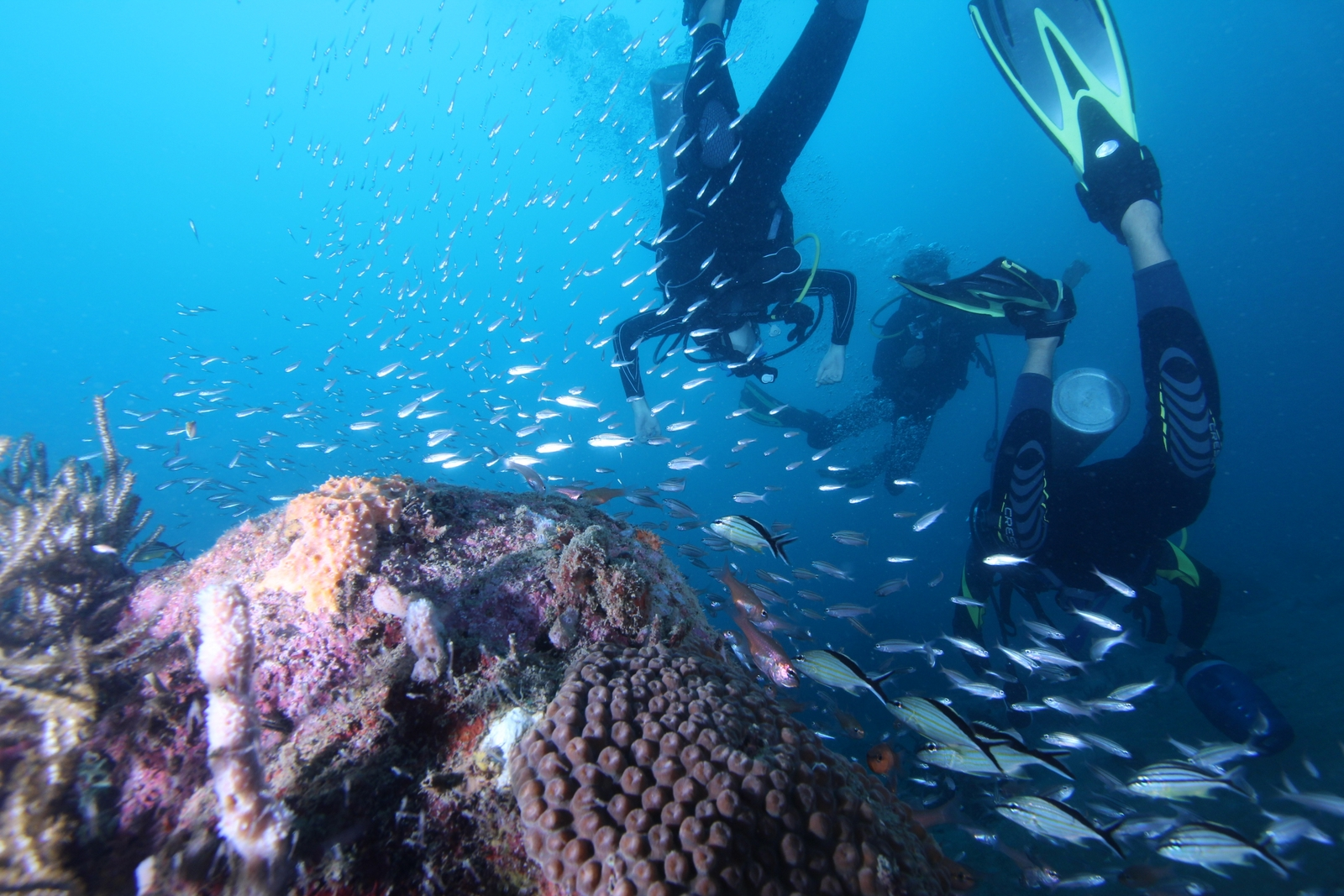 arrecifes-tayrona-park-taganga-santa-marta-aquasport