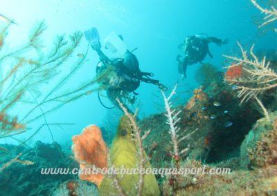 www.centrodebuceoaquasport.com