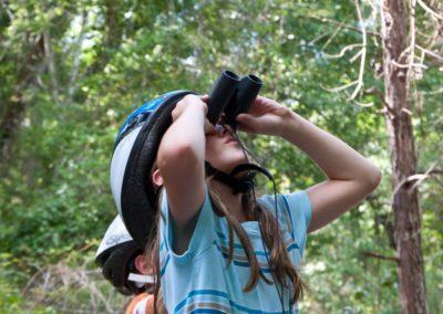 birdwatching (1)